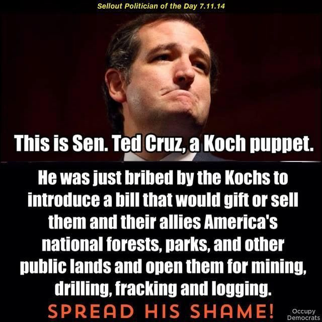 This is Senator Ted Cruz, A Koch puppet. He was just bribed by the Kochs to introduce a bill that would gift or sell them and their allies America's national forests, parks and other public lands and open them for mining, drilling, fracking and logging. SPREAD HIS SHAME!