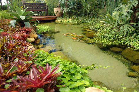 177 Best Images About Gardening Jardinagem On Pinterest