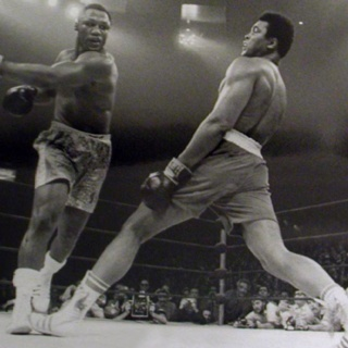 Float like a butterflyBees, Muhammad Ali, Butterflies, Mohammed Ali, Boxes, Sports, Mohammadali, New York, Madison Squares