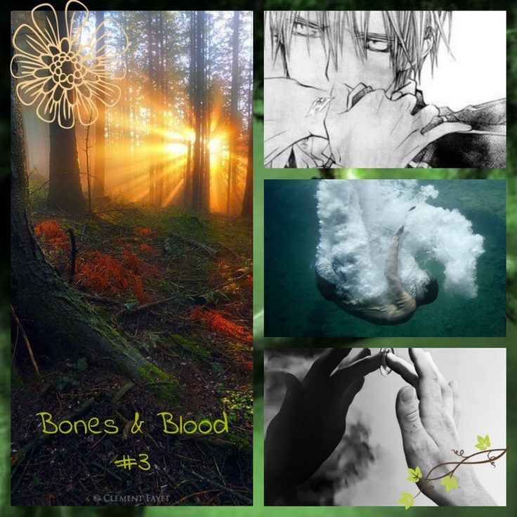 Bones & Blood #3