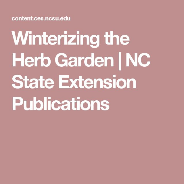 Winterizing the Herb Garden | NC State Extension Publications