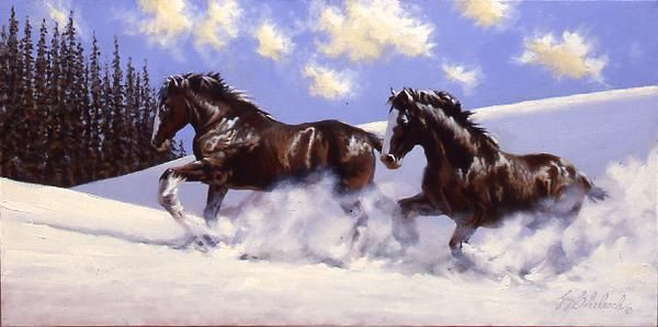 Clydesdale Horse in Snow | CLYDESDALES SNOW | HORSES ... 7 White Horses Running Painting
