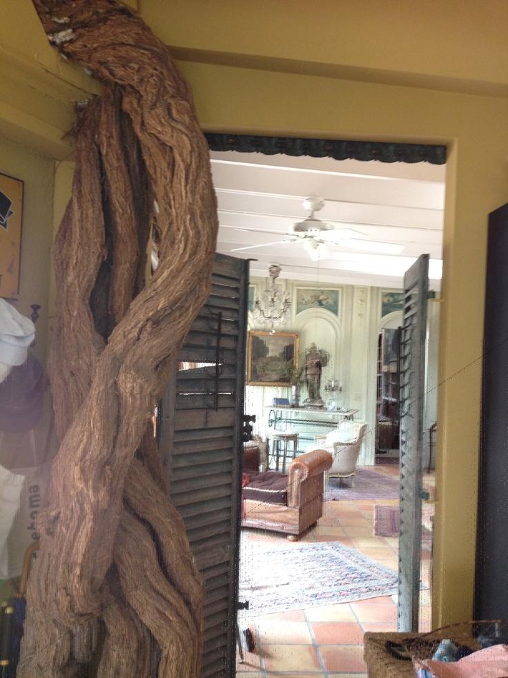 love the shutters: Trunks, Front Doors, Vines Inside, Blog, The Secret Gardens, Shutters, Trumpets Vines