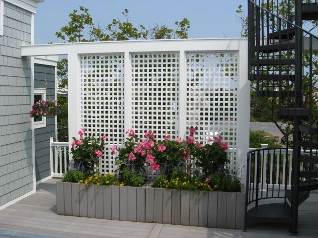 High Quality Best 20+ Patio Privacy Screen Ideas On Pinterest | Patio Privacy, Outdoor  Privacy And Outdoor Privacy Screens