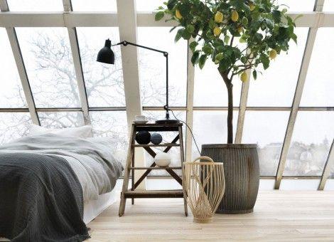 tips slaapkamer inrichten met planten