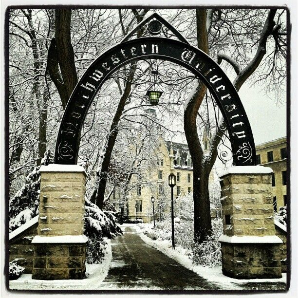 University of chicago arch nemesis essay