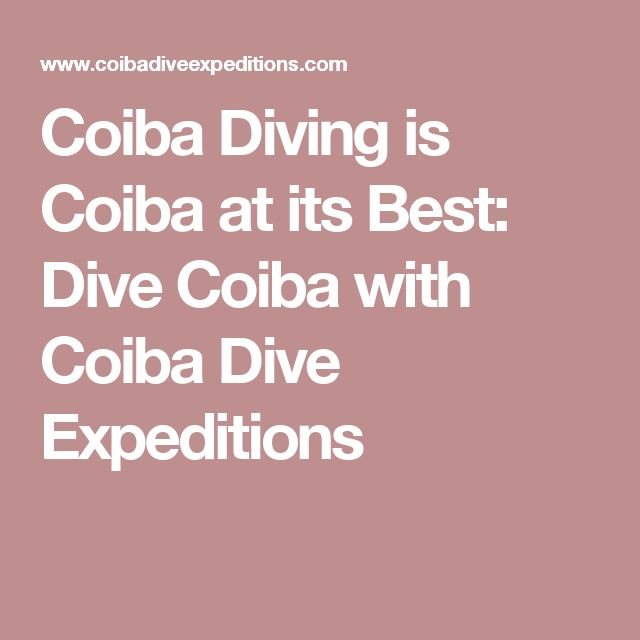Coiba Diving is Coiba at its Best: Dive Coiba with Coiba Dive Expeditions