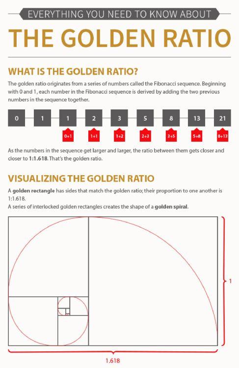 Best Fibonacci Images On   Fibonacci Spiral Sacred