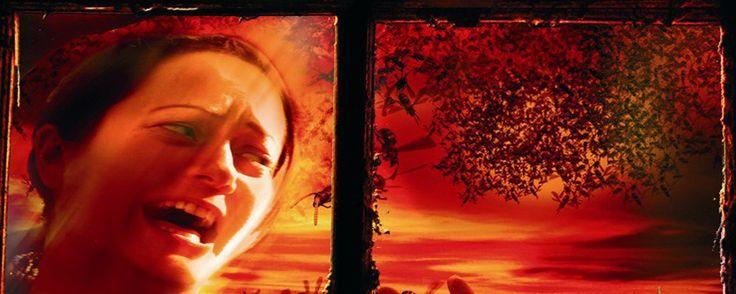 Swarmed – Genetic Crime (2005) HORROR – DURATA 88′ – CANADA Un tecnico di laboratorio, nel tentativo di elaborare un insetticida più potente della media, prepara una sostanza che in realtà rende le vespe molto più aggressive, dotate di un veleno assai potente e in grado di emanare fortissimi feromoni. Un uomo delle pulizie, nottetempo, libera accidentalmente due delle vespe che lo uccidono e, il giorno dopo, un disinfestatore, avendo esaurito l'insetticida...