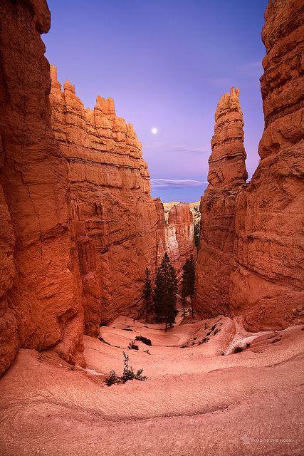 Bryce Canyon National Park; photo by Raul Cruz Arnelas