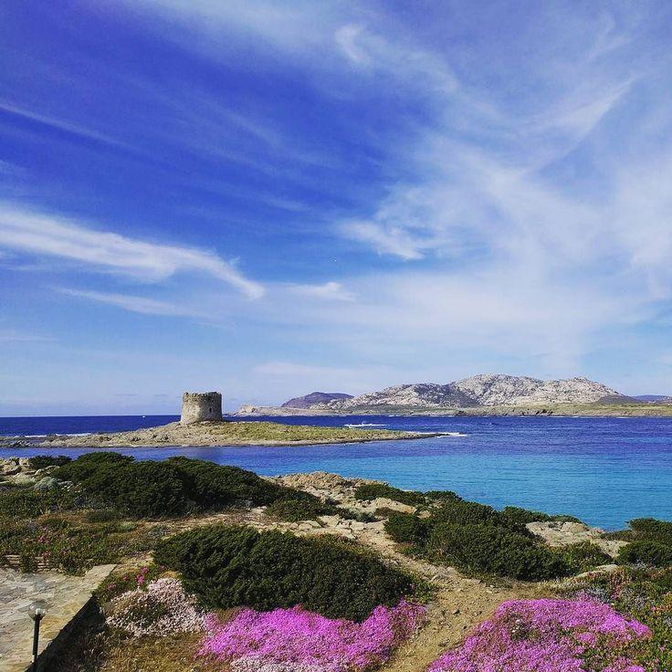 Сардиния Италия Sardaigne Italie  #italie #lapelosa #sardaigne #mai #италия #сардиния #лапелоза #май #море #башня #mer #tour #RomaPur  #vacances