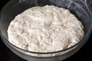 Handle the Heat » The Best No-Knead Pizza Dough Ever! Might have to try this even though I have a yummy dough recipe.