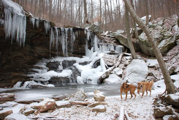 Frozen Head State Park  Wartburg, TN  Great place for camping, just ignore the name of the town OH and don't worry that you drive right past Brush Mountain Penitentiary... it's only 3mi from the park...LOL