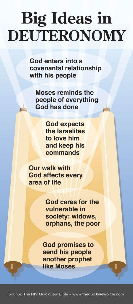 This book is a repetition of very much both of the history and of the laws contained in the three foregoing books, which repetition Moses delivered to Israel (both by word of mouth, that it might affect, and by writing, that it might abide) a little before his death.