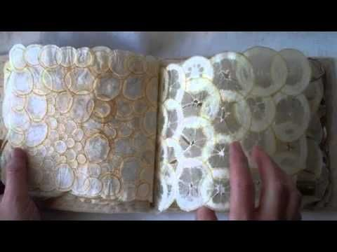 ▶ Susan Mills - Garden Ledger, artist book. pages made from dried fruits - beautiful!
