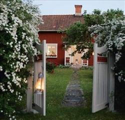 Trädgårdsmys