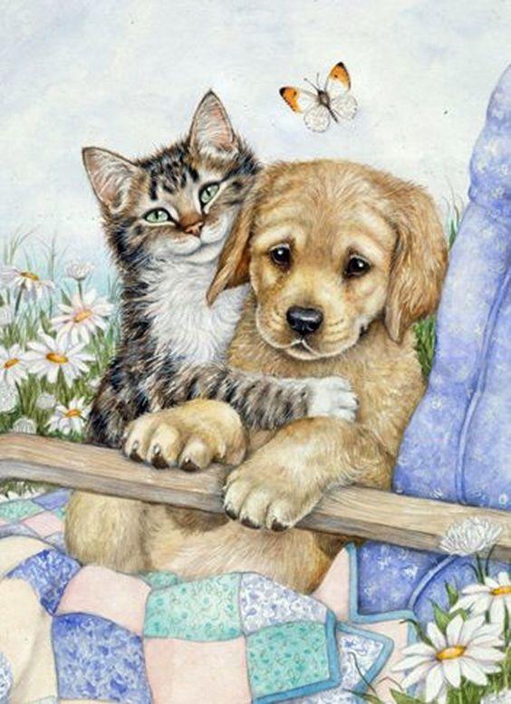приготовления рисунок про кошек и собак оставленной