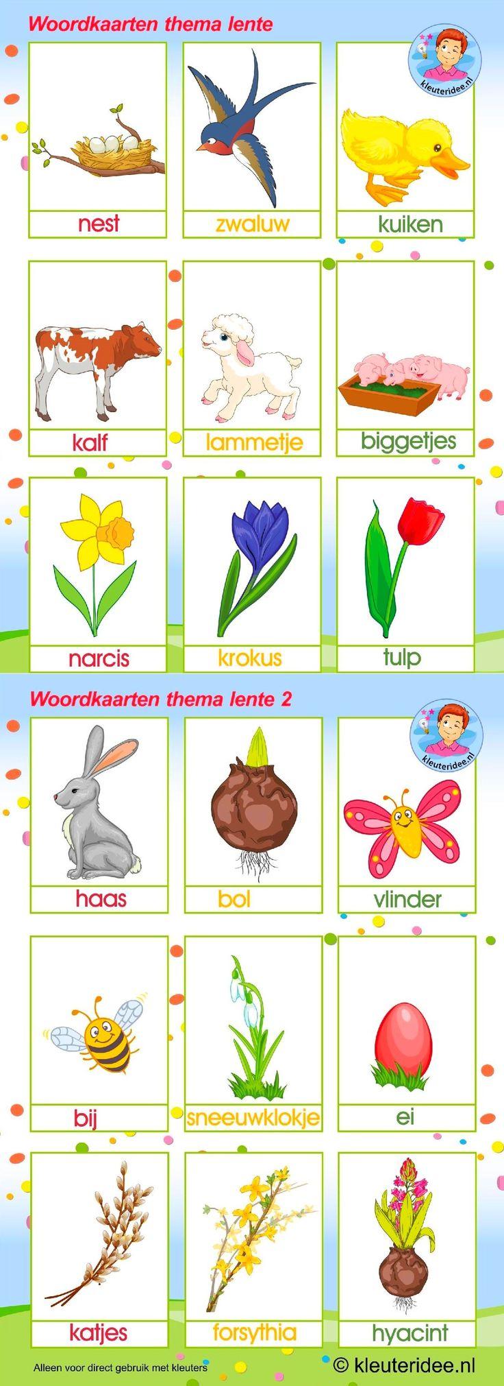 Woordkaarten. Thema : lente