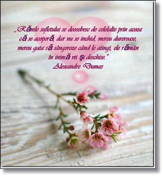 """,,Rănile sufletului se deosebesc de celelalte prin aceea că se acoperă, dar nu se inchid, mereu dureroase, mereu gata să sângereze când le atingi, ele rămân în inimă vii şi deschise."""" Alexandre Dumas"""