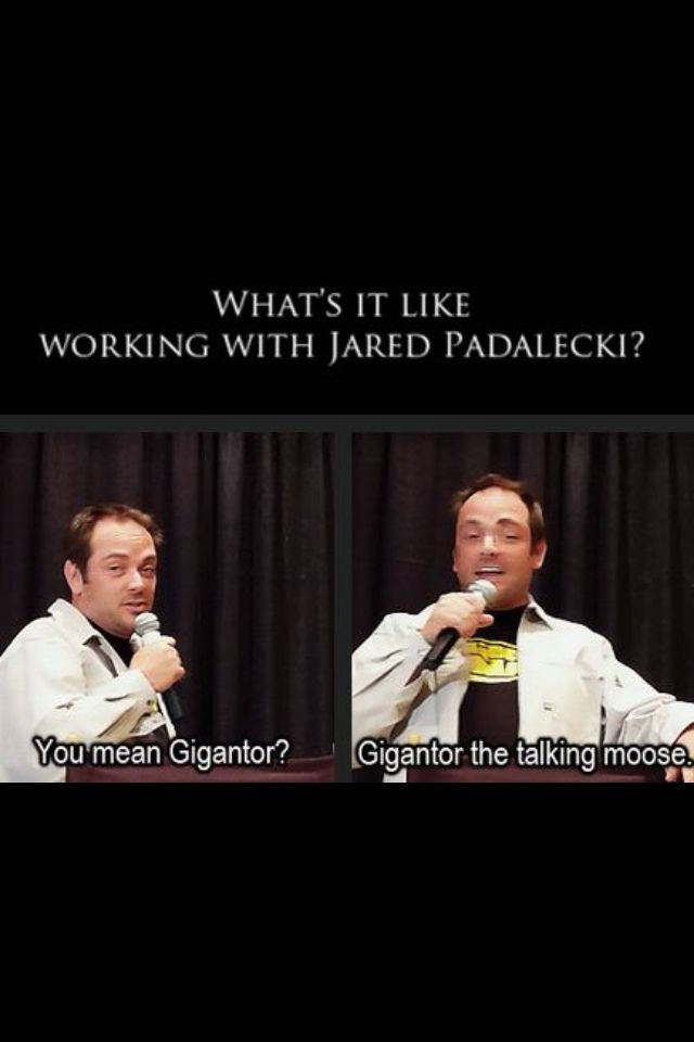 LOVE Mark Sheppard.... in everything he does... but specifically Supernatural!!!