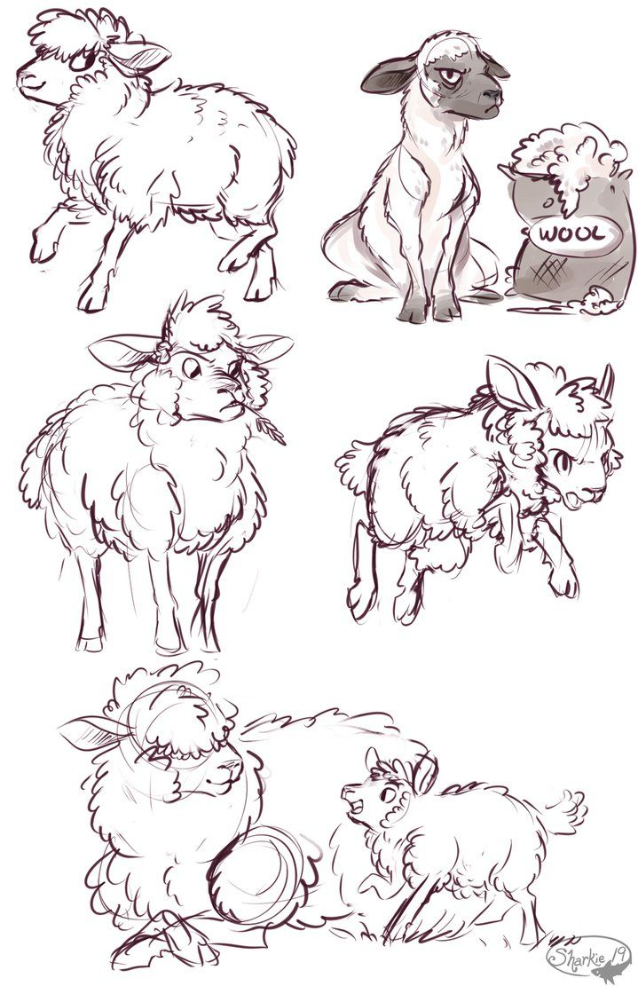 Sheep by sharkie19 on DeviantArt