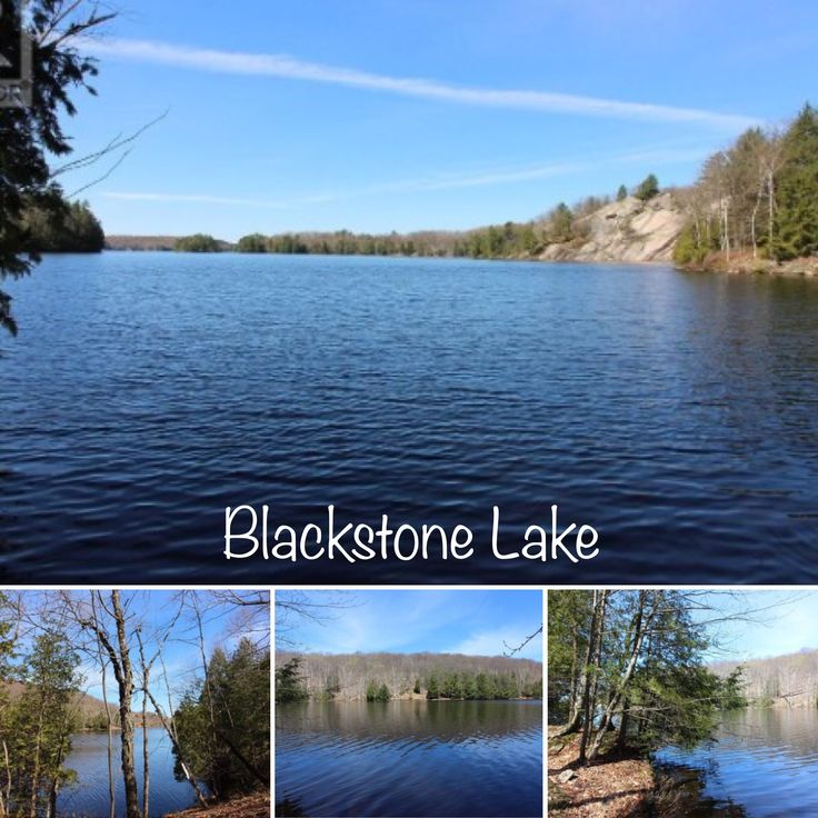 🎣 Water access vacant wooded building lot on Blackstone Lake that offers a TREMENDOUS LAKE SYSTEM with four CONNECTING LAKES and OVER 100 MILES OF SHORELINE. 🐟 Enjoy sunsets & privacy on this 3.8 acre lot with 466 ft frontage. 🌅 Deep water & sand beach. ⛵️Looking to build that dream cottage? 🏡This may be the one!