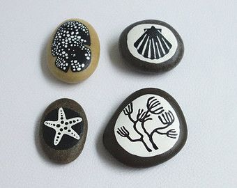 galets peints / coquillages, éponge marine, étoile de mer et corail / graphisme noir et blanc
