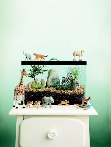 Safari Terrarium -★-