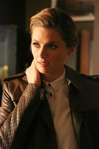 "Castle 5x17 ""Scared to Death"" - Stana Katic  Oh, the gorgeousness!  I can't pretend that her hair, when down, isn't the equivalent of hair porn, but I just LOVE it when it's up!  She's such a beauty!"