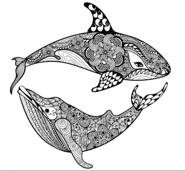 Tareitas Mandala De Orcas Mandalas Animales Manos Dibujo Mandalas