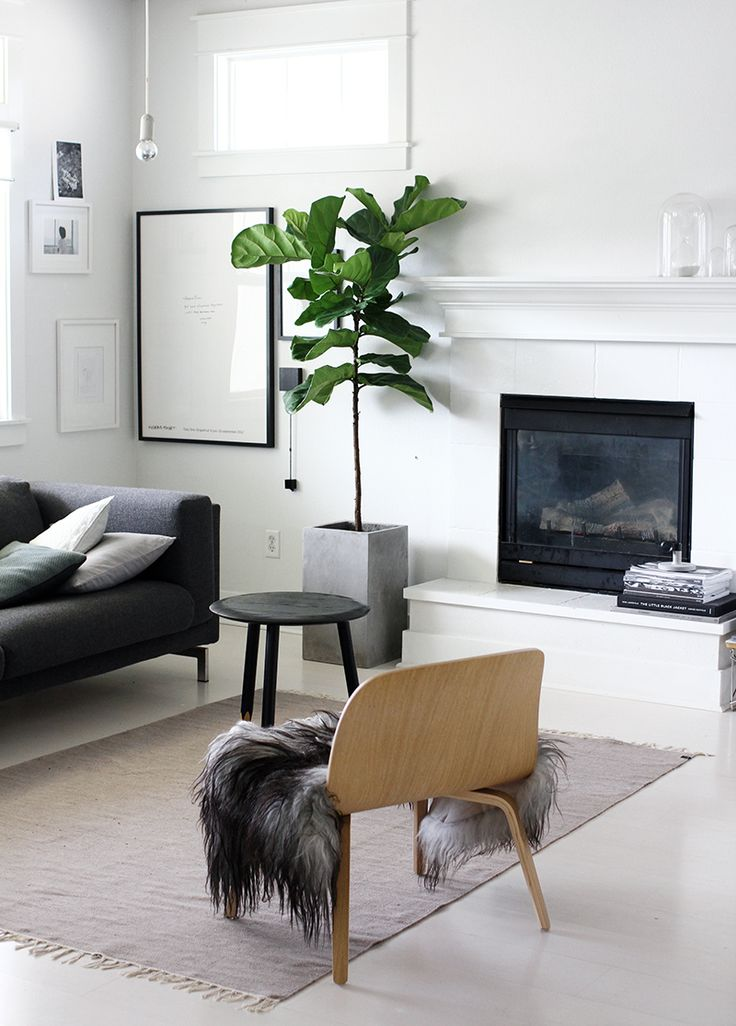 Minimalist living room // indoor plants // white & black decor