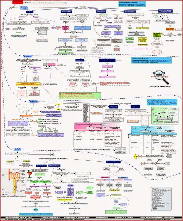 Drug-drug Interactions Concept Map | Pharmacokinetic Drug Interactions | Pharmacodynamic Drug Interactions ~ Zoom out - Pharmacotherapy
