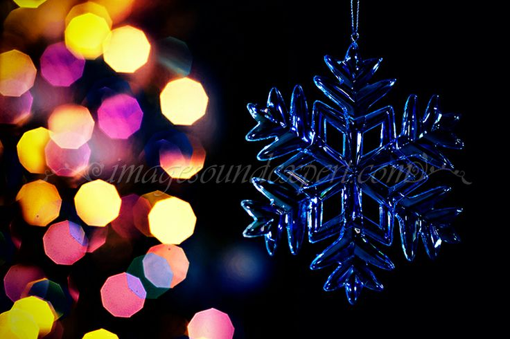 ornamente brad, ornament tree, ornament baum, arbre d'ornement, magic christmas