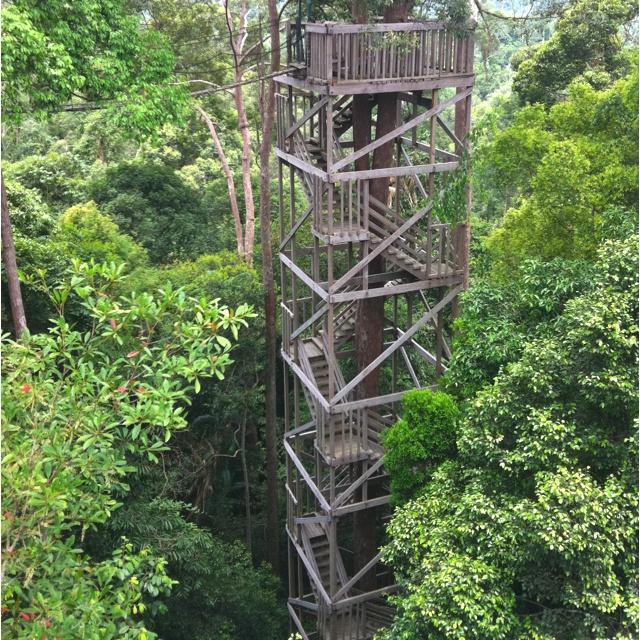 Canopy Bridge at Bukit Bangkirai National Park, Balikpapan