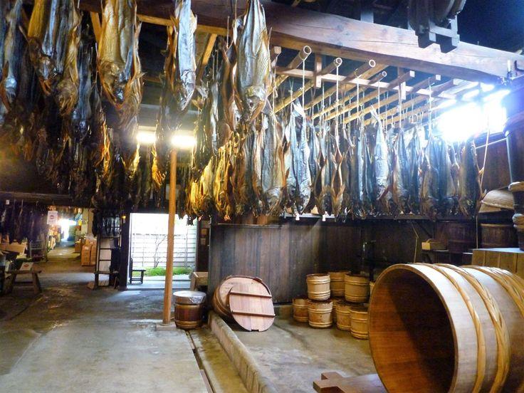 Patrocinado por la ciudad de Murakami  Ya en la época de los samurái, la localidad de Murakami destacaba por su relación con la pesca del salmón. Según se explica, fue en el Murakami de aquellos tiempos donde por vez primera se acertó a relacionar el ascenso fluvial de los salmones con un retorno a su lugar de nacimiento. Un descubrimiento fundamental, ya que eso permitió que se creara una industria boyante alrededor de este pescado. Haciendo desovar en sus riberas, los pescadores se…