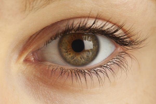 AN EYELASH CARE CENTER YOU CAN TRUST: Causes and Remedies for Eyelashes Falling Out,Do Eyelashes Grow Back? How to Grow or Make Eyelashes Grow Fast – Tips, Eyelash Growth Products, Conditioners, Diet,Etc.