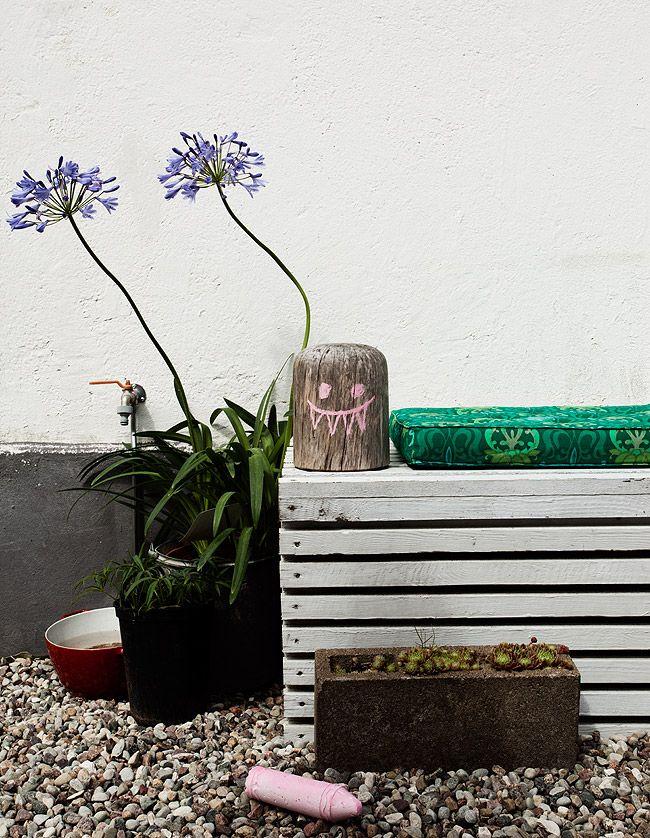 Nice angles of my garden | Dos Family