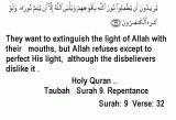 The light of Allah