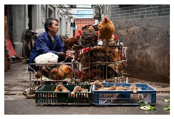 Shanghai Alleys on Behance