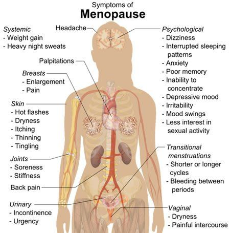Fluctuating Estrogen Increases Sensitivity to Stress and Depression During Menopausal Transition - NeuroscienceNews.com - Diagram shows how menopause affects the body. #science #neurology #health
