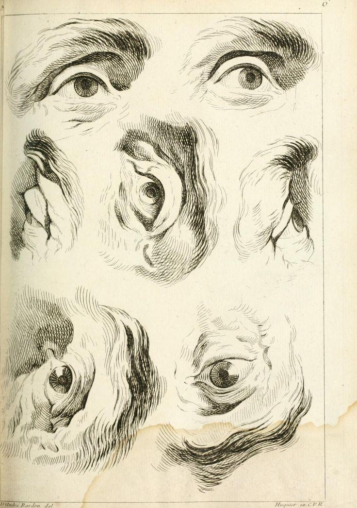 Estudios de la anatomía del ojo humano