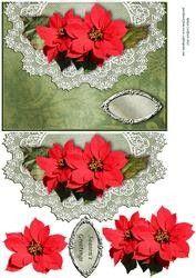 Rode Poinsettia op Kant Jacobsschelp Envelop Card Voorzijde