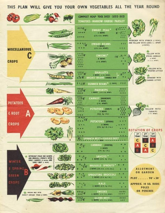 Victory Garden Planting Guide