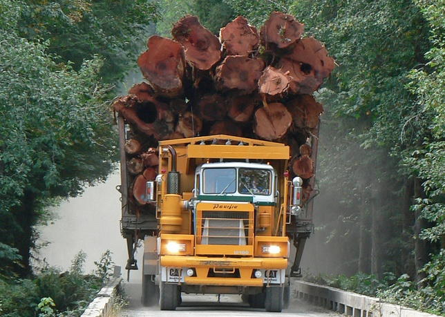 A huge Logging Truck screaming down the logging road. Nininat Valley, Vancouver Island Canada