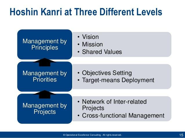 Operational Excellence Consulting All Rights Reserved 15 Hoshin Kanri At Three Different Levels Operational Excellence Management By Objectives Mission