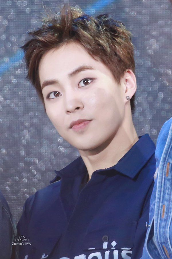 1000 images about xiumin ��bias on pinterest
