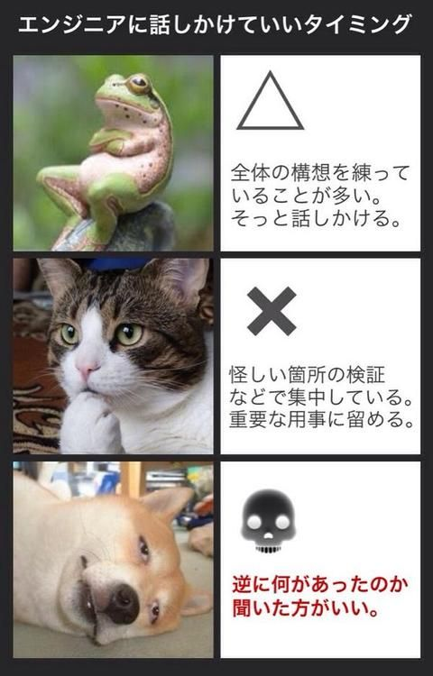 (5) Tumblr