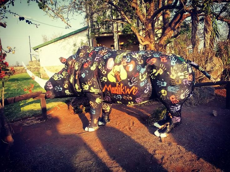 The Rhino for Rhino day representing the cause against Rhino poaching Hands for our Rhinos Photo Credit: Chantelle Terblanche
