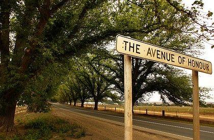 Bacchus Marsh The Avenue of Honour