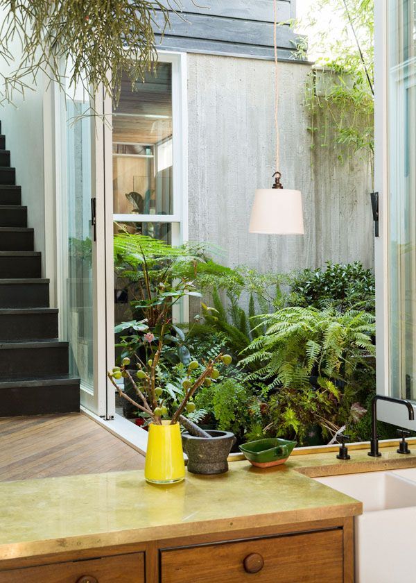 Sydney garden of Jonathan West, Shauna Greyerbiehl + family. Their internal courtyard is so lush and lovely! | The Design Files